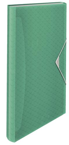 Esselte Colour'Ice  Expanding Concertina File, Polypropylene, Translucent, 6 tabbed compartments for A4 paper,  Green - Outer carton of 6