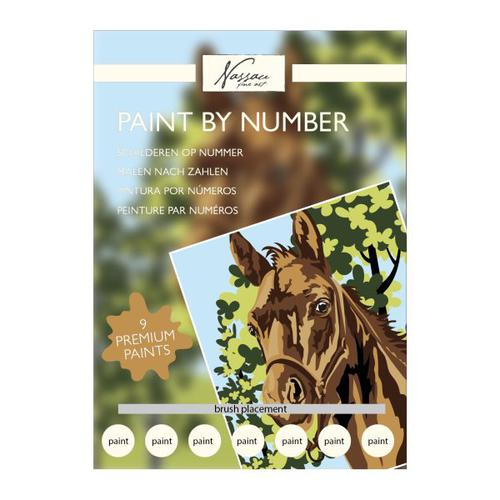 Fine Art Paint by Numbers - Horse