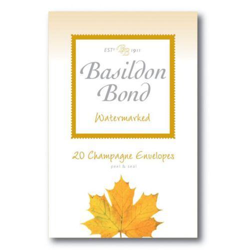 Basildon Bond Duke Env 95x143mm Chmp 20s Pack 10