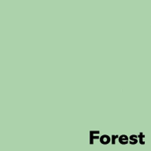 Image Coloraction Pastel Green (Forest) FSC4 Sra2 450X640mm 120Gm2 Pack 250