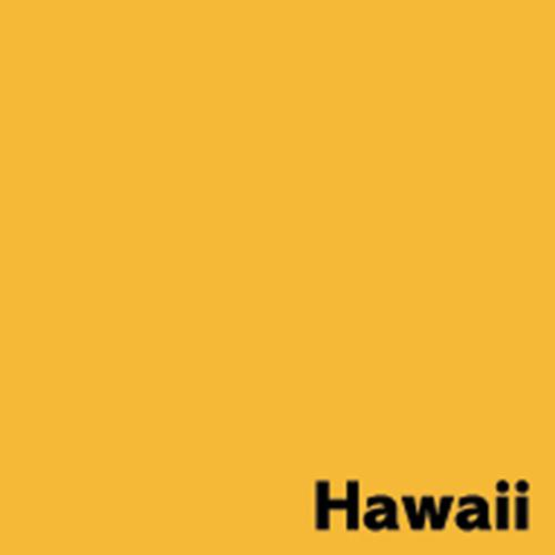 Image Coloraction Pale Gold (Hawaii) FSC4 Sra2 450 X640mm 80Gm2 Pack 500
