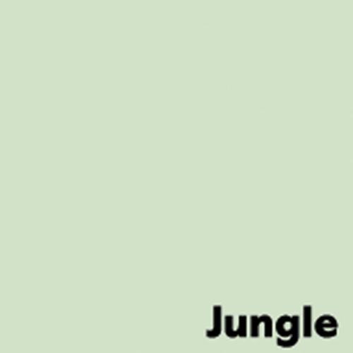 Image Coloraction Pale Green (Jungle) FSC4 Sra2 45 0X640mm 120Gm2 Pack 250