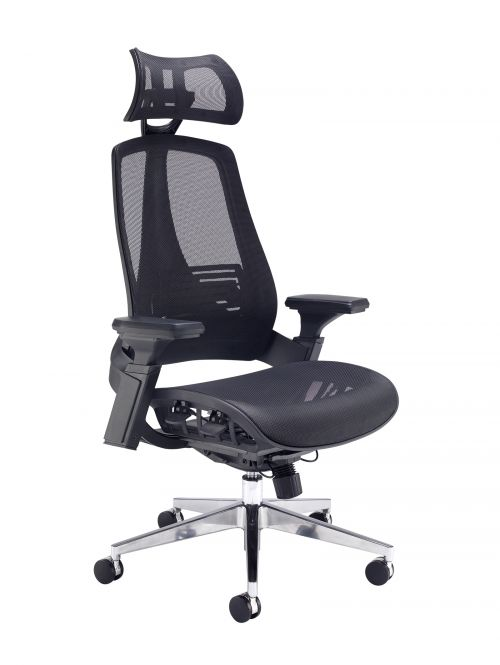Back posture chair
