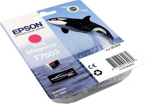 Epson C13T6034010 T7603 Vivid Magenta Ink 26ml