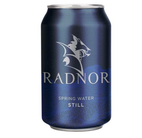 Radnor Still Spring Water 330ml Cans (Pack 24) 0201059