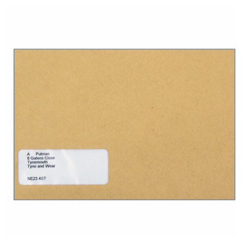 Custom Forms Sage Name/Address Wage Envelope Pack 1000