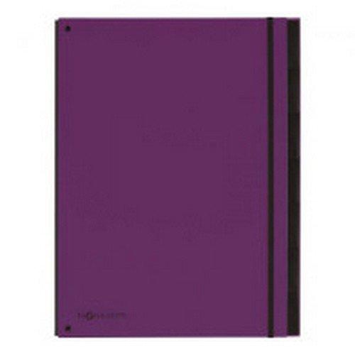 Pagna Master Organiser A4 Purple 7 part