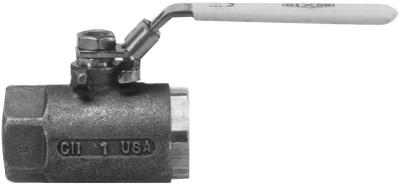 DIXON VALVE Ball Valves, 1/4 in (NPT) Inlet, Female/Female, Stainless Steel