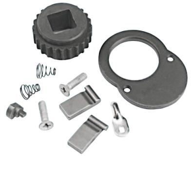 PROTO 5249 Ratchet Repair Kit