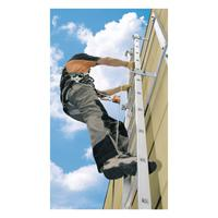 493 150027 ladder safety systems