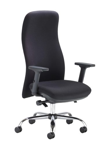 Ergonomic Posture Chair - Black
