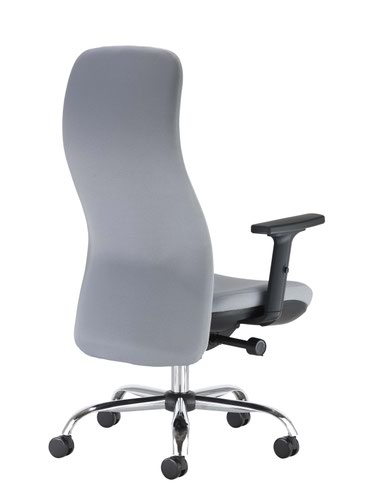 Ergonomic Posture Chair - Grey