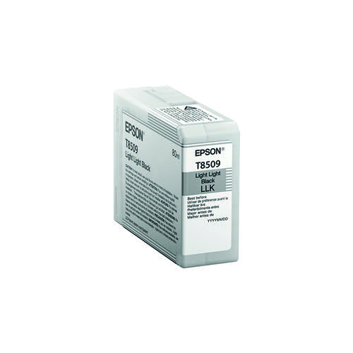 Epson Light Light Black Ink Cartridge C13T850900