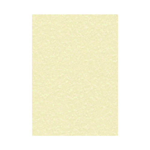 Decadry Parchment A4 Letterhead Paper 95gsm Champagne (Pack of 100) PCL1601 Plain Paper LX13498